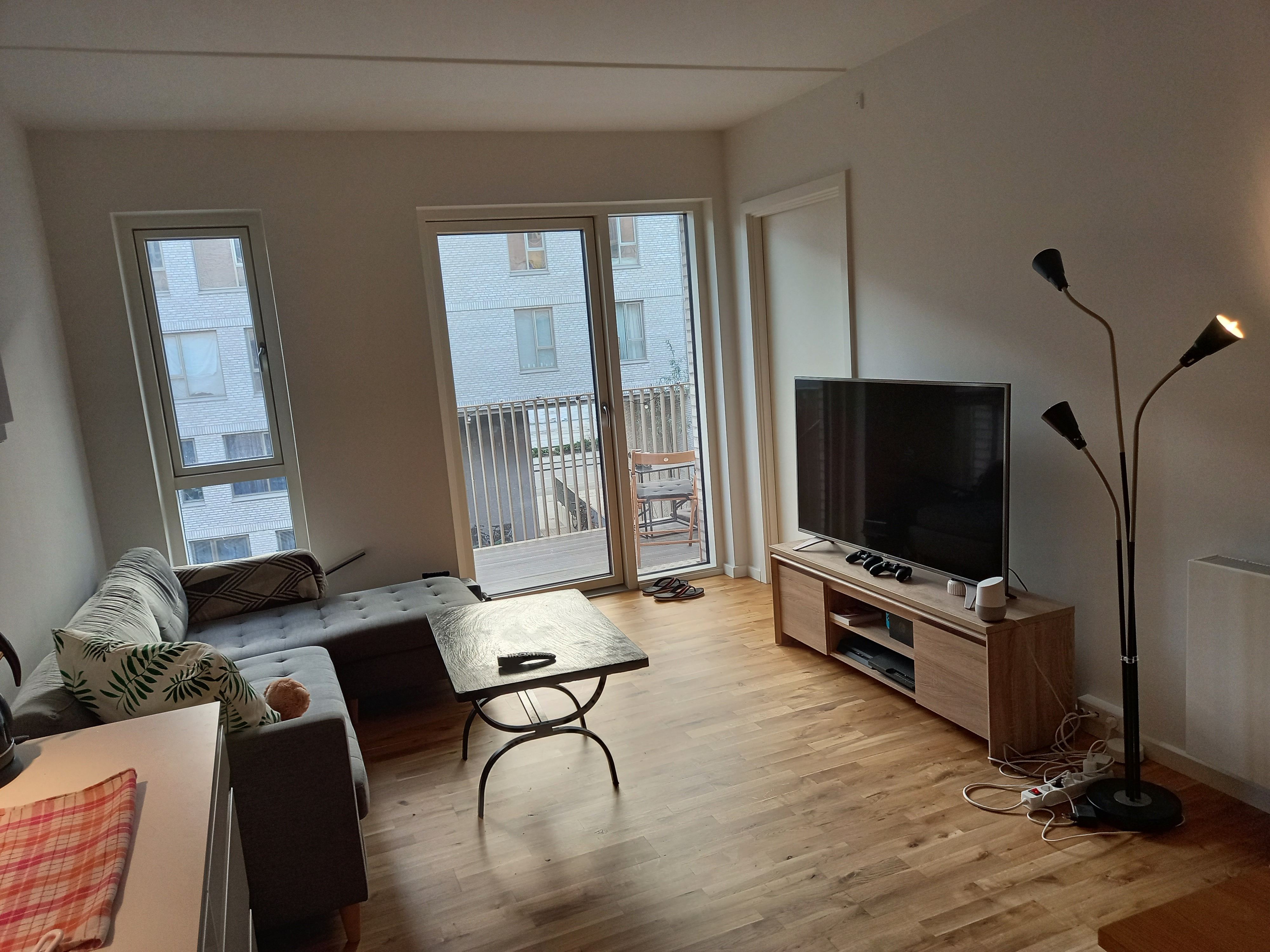 Looking for a social roommate from February!