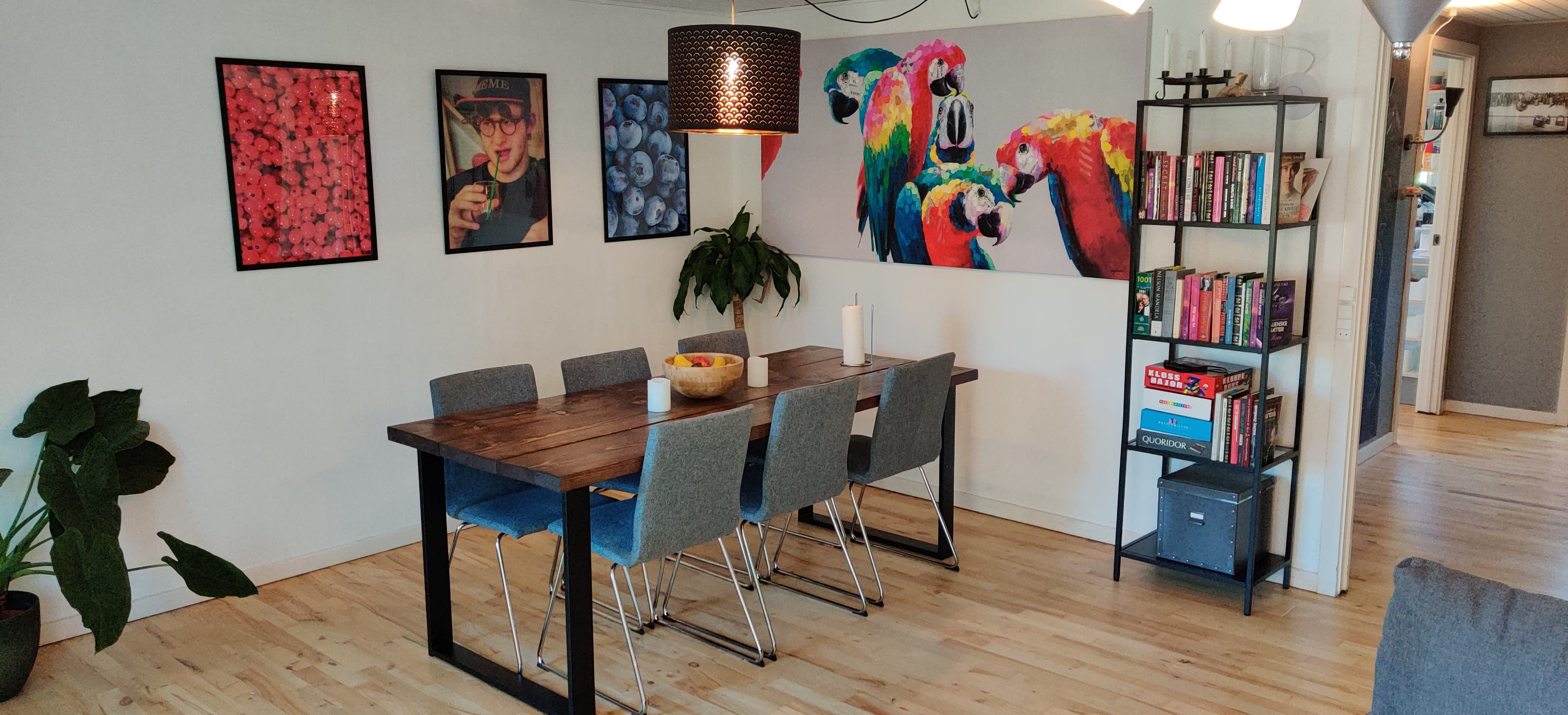 """Stay with 2 """"Cool"""" boys in a cozy terraced house on Amager"""