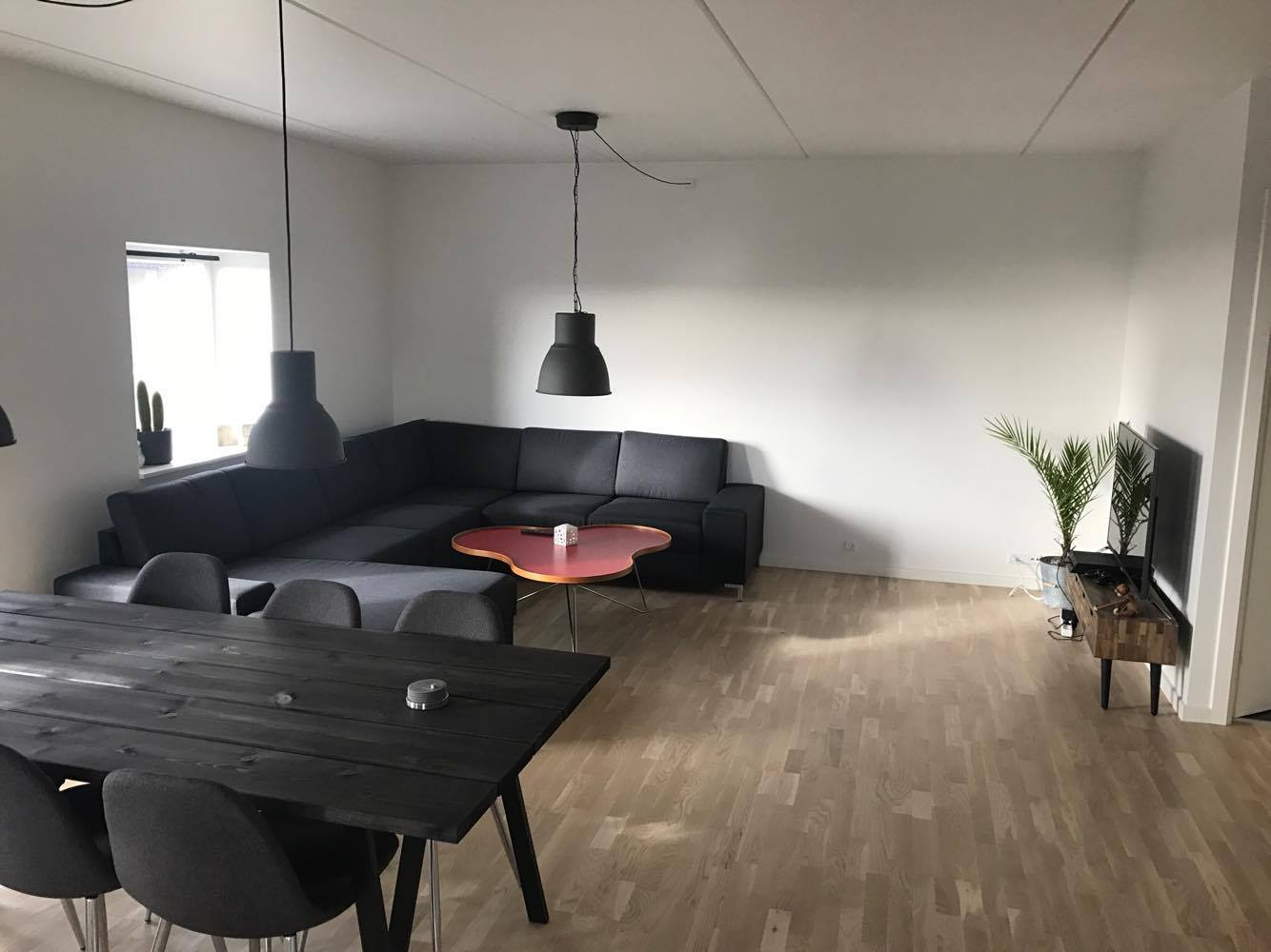 Room for rent in large newly built apartment