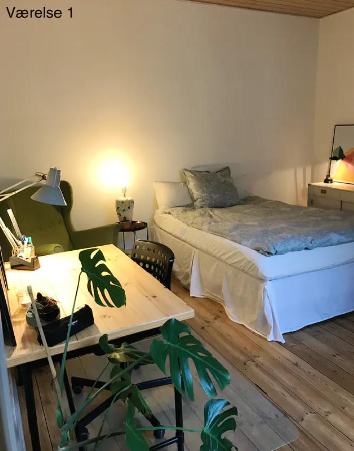 2 store værelser ledige i hyggeligt bofællesskab i Algade