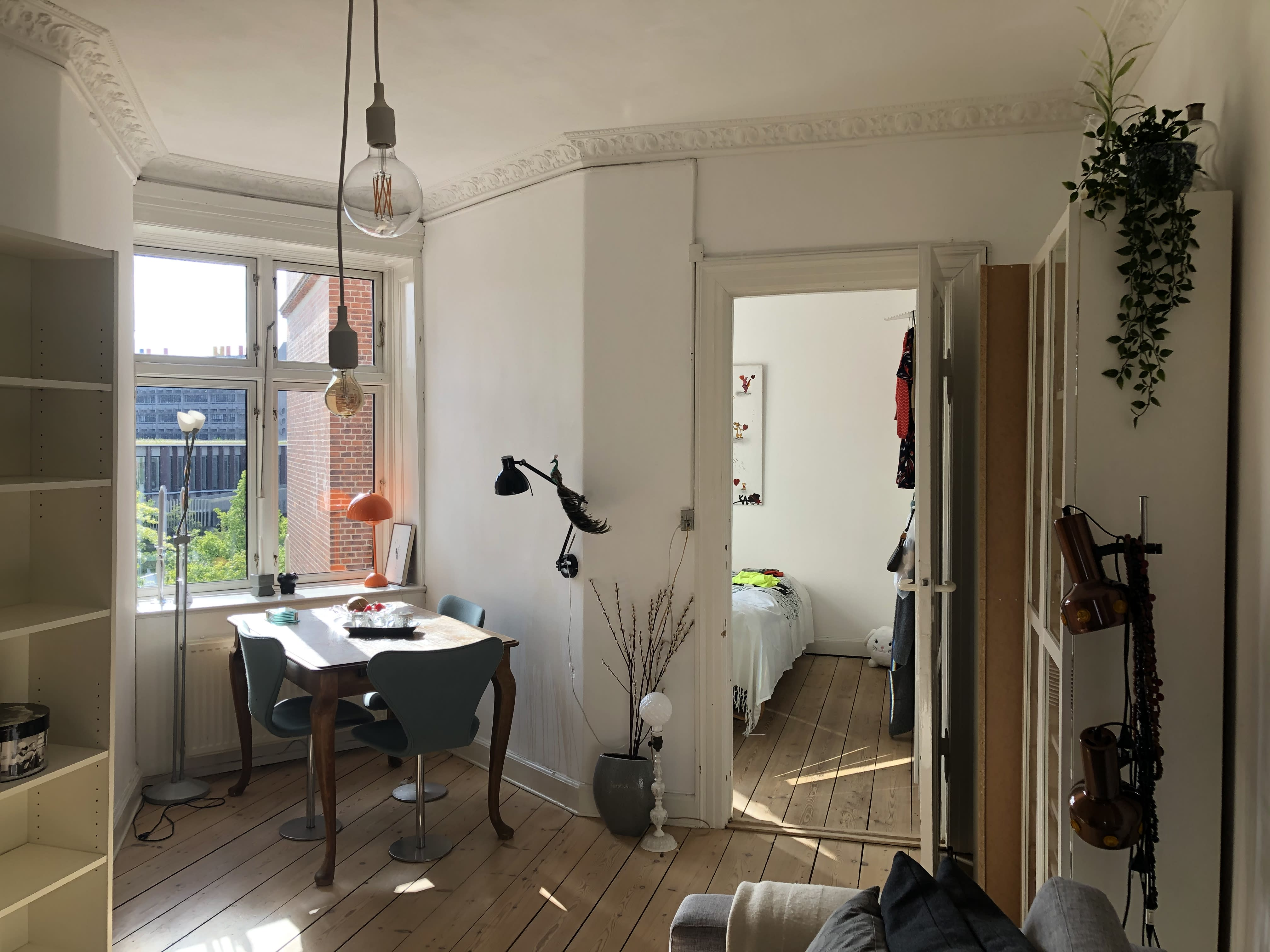 half apartment -two rooms to rent 50 square