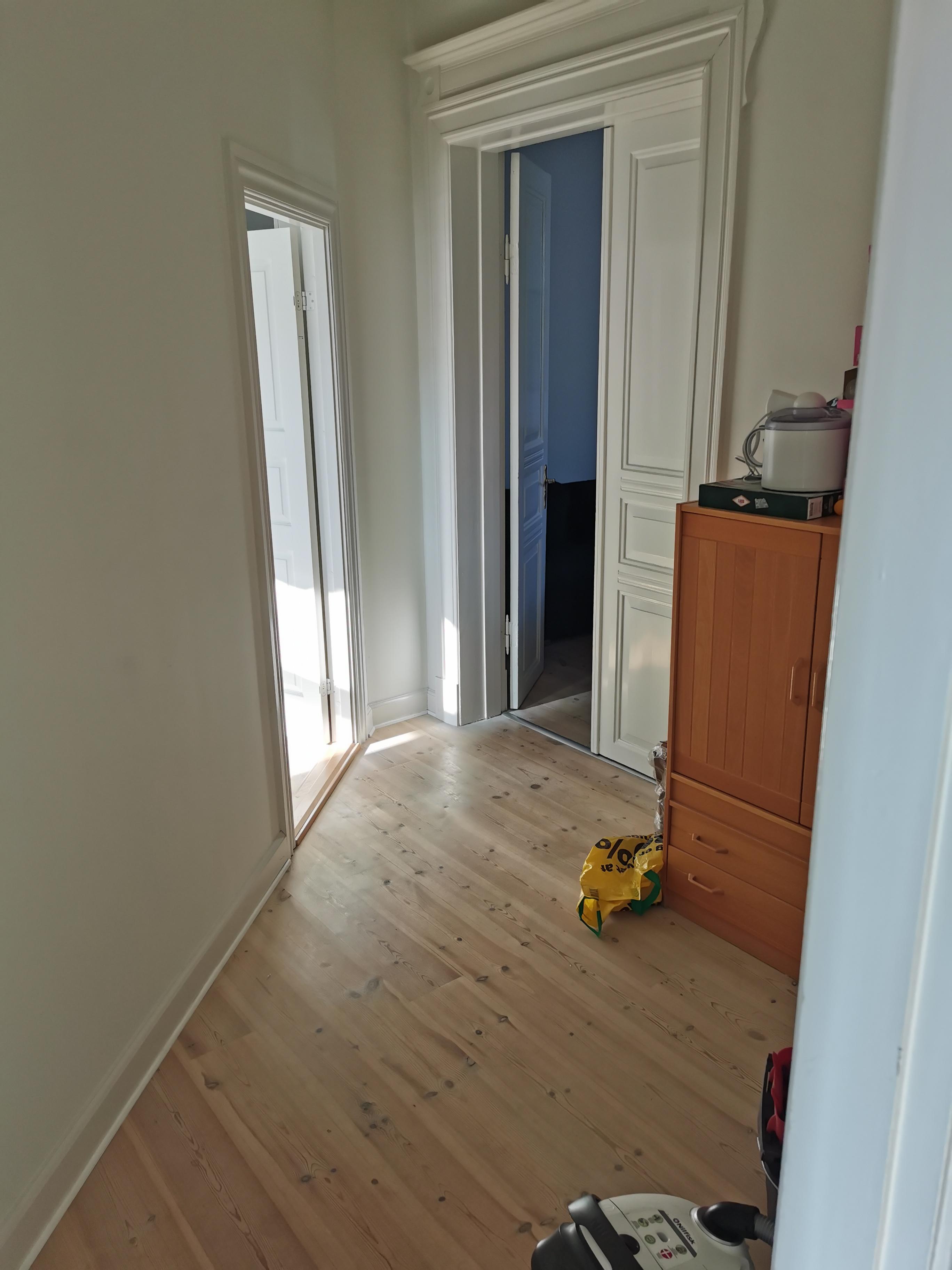 Roommate søges til central lejlighed i Odense fra 1/11