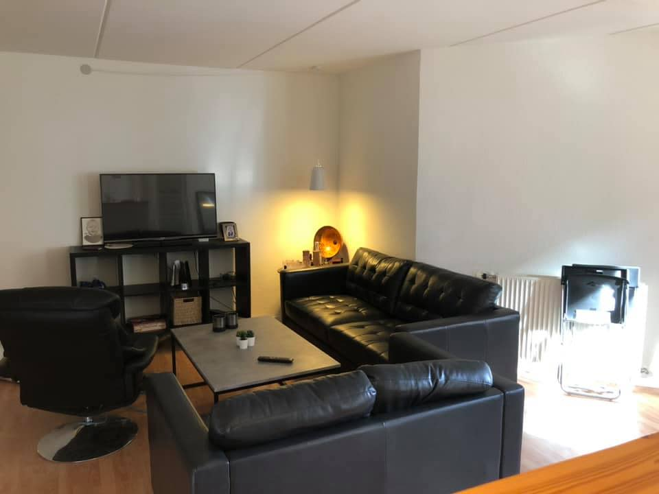 Roommate søges til 3-værelses lejlighed i Odense