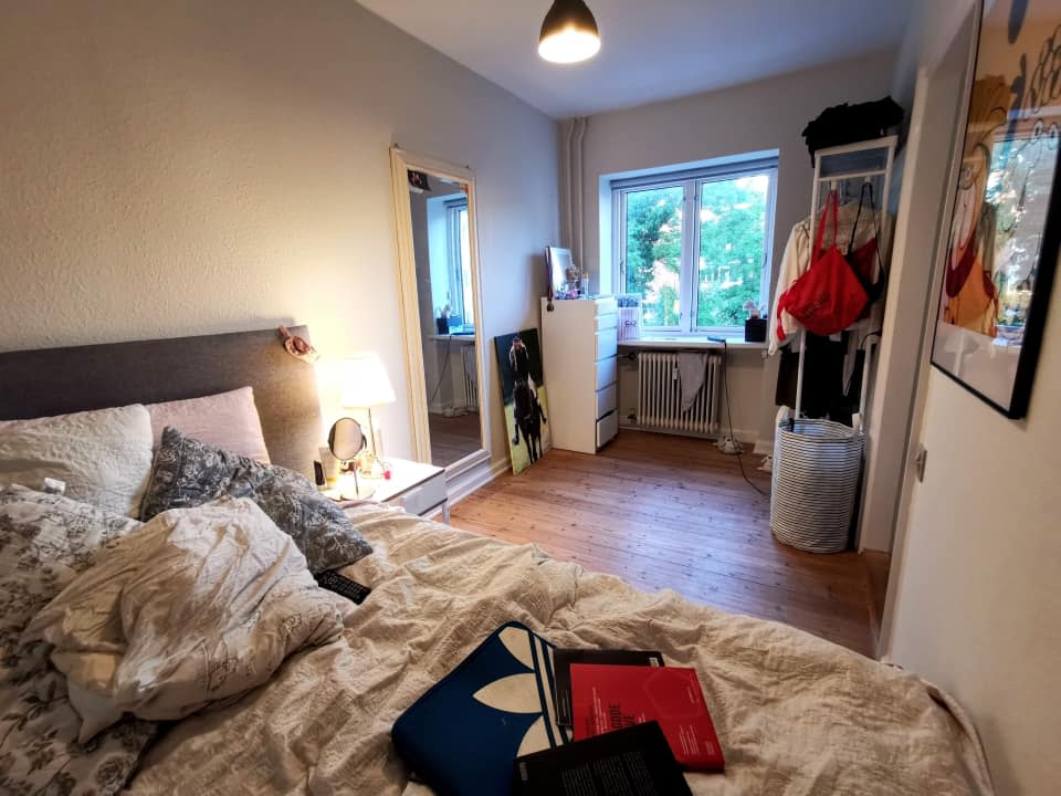 Roommate is looking for a big apartment in Odense