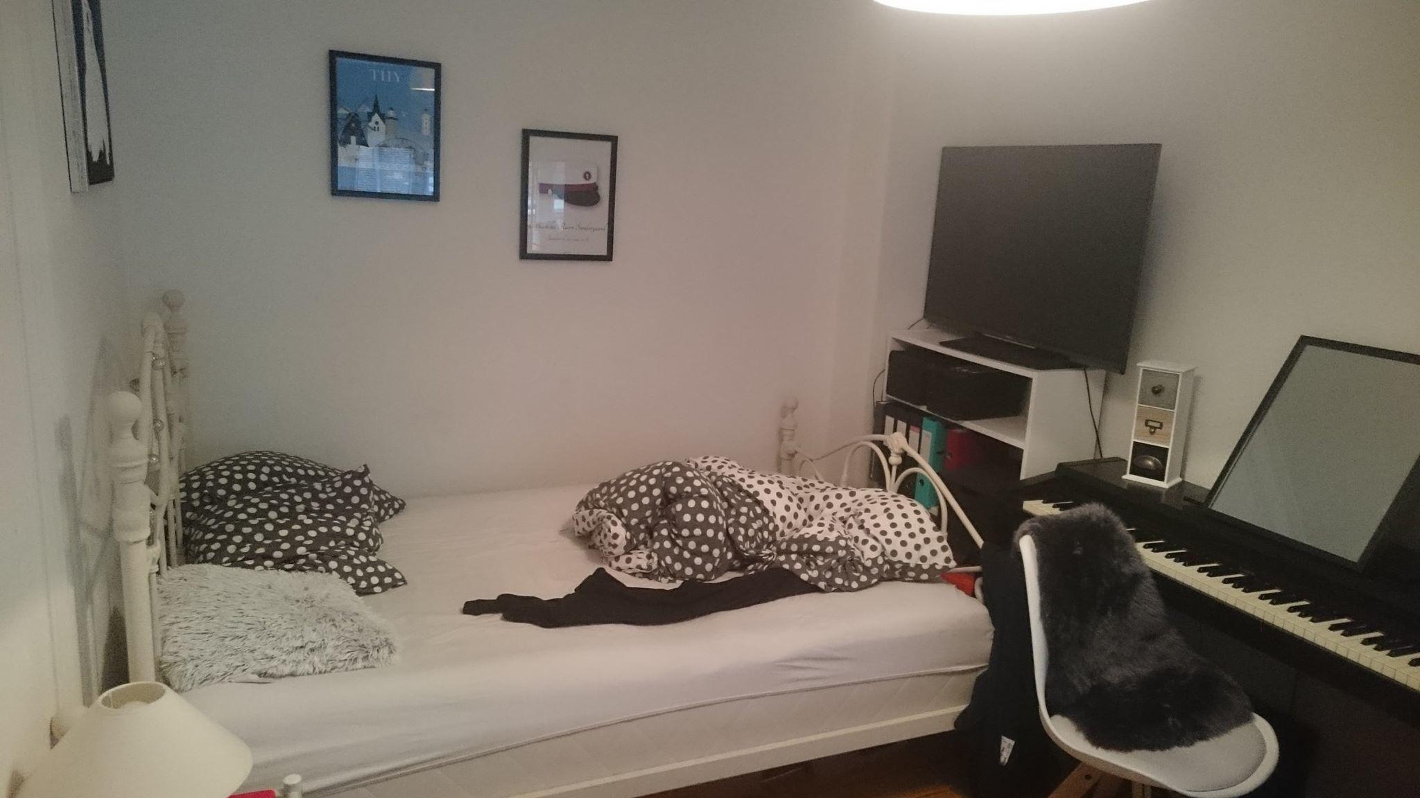 Er du min nye roomie til en skøn 70 kvm lejlighed?