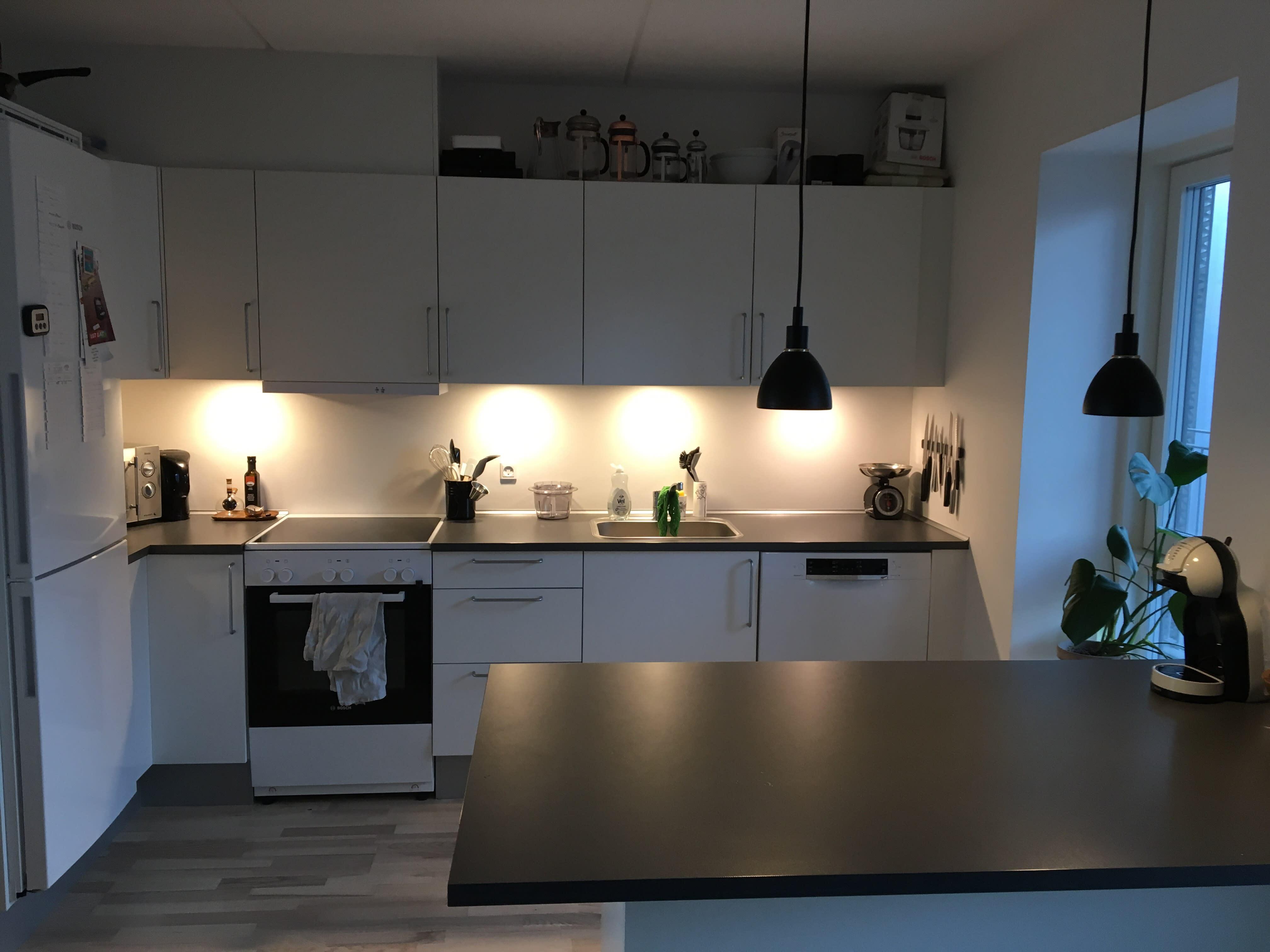 Roomie søges til 4-værelses lejlighed tæt på SDU i Odense