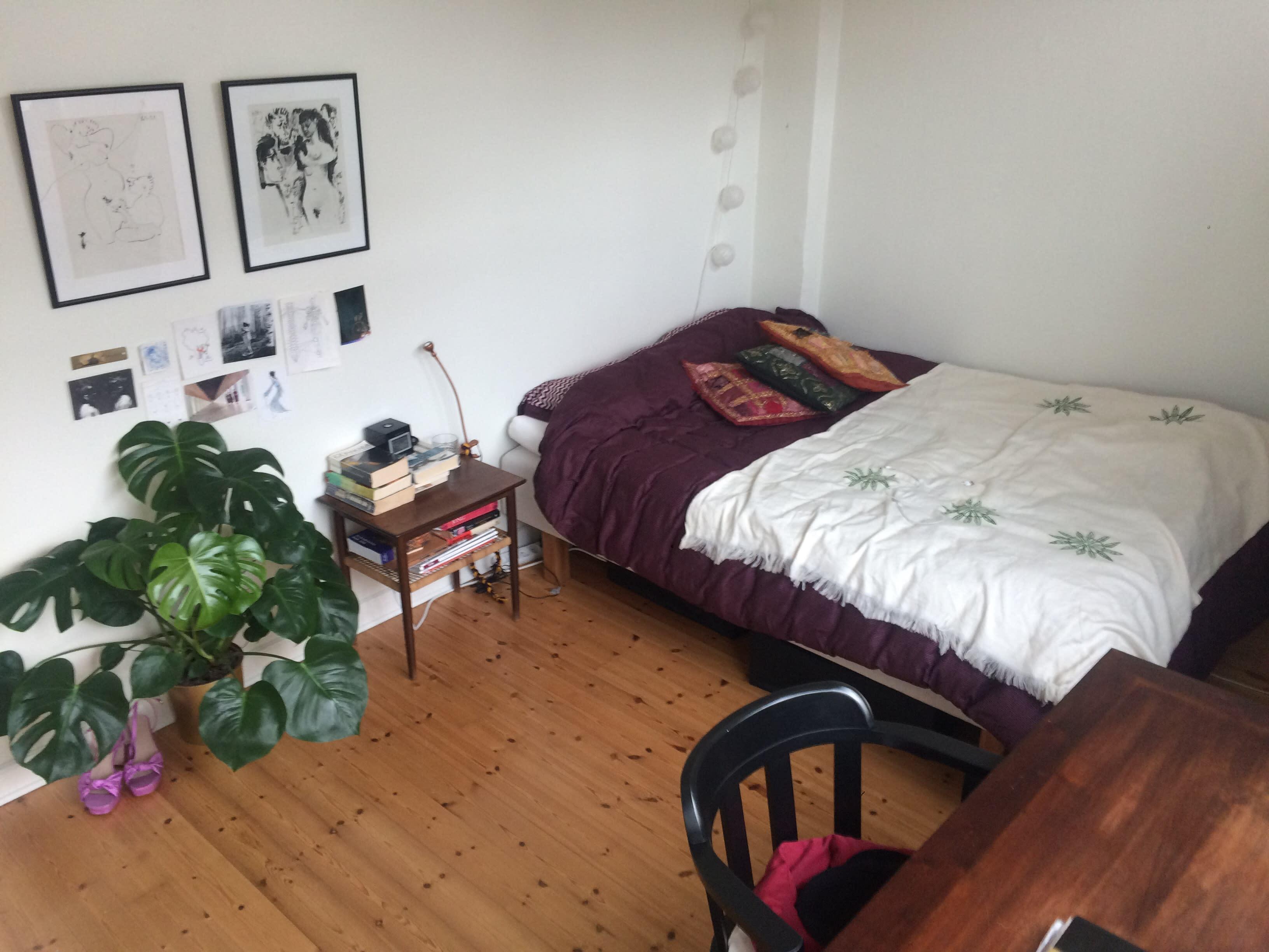 Fremleje af værelse med tilhørende sød roomie