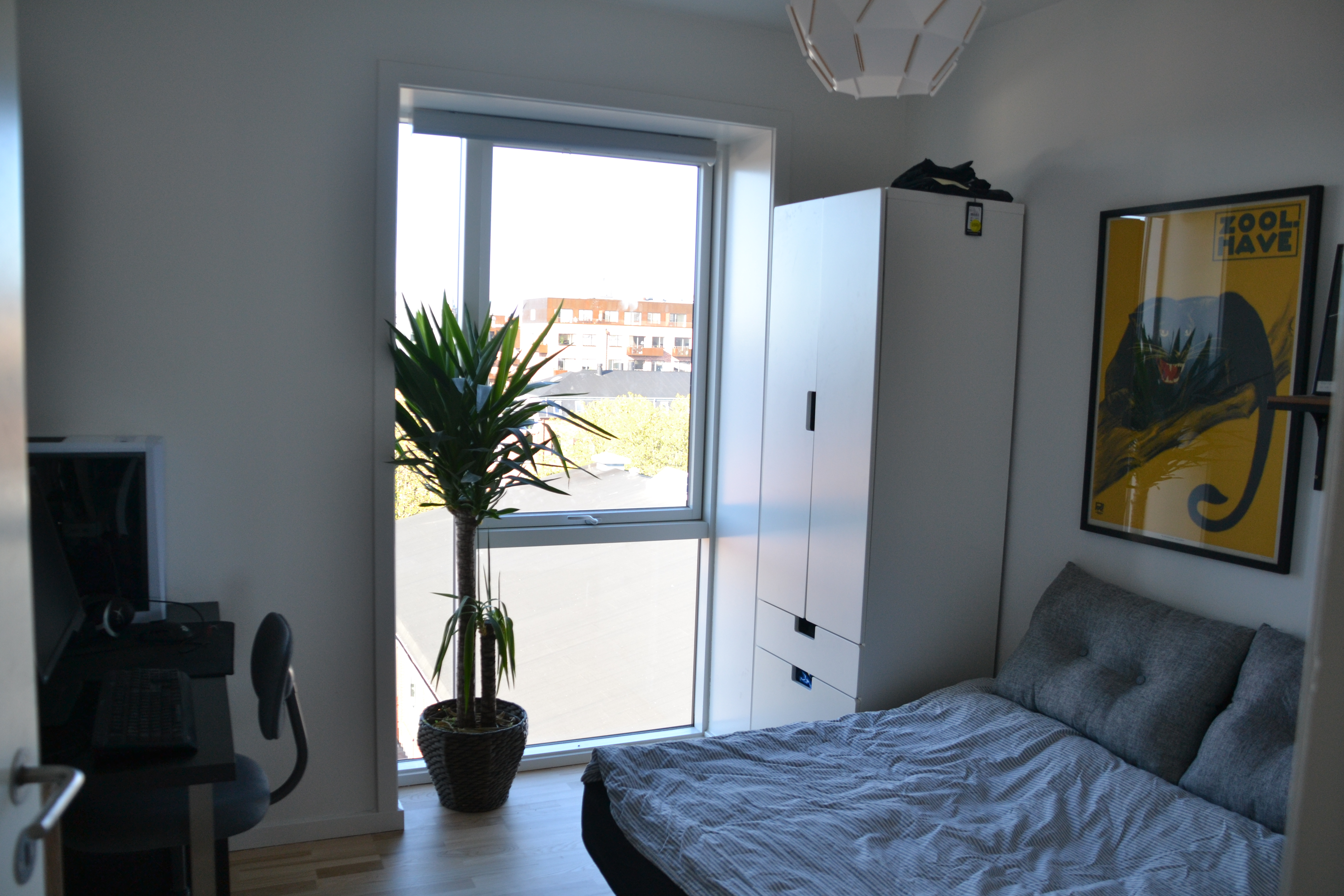 Searching for Danish or international roommate for half a year
